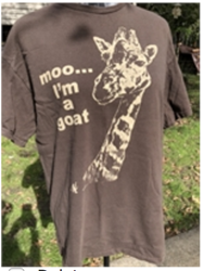 Giraffe T-shirt  Dark brown  Size large   Preowned Short sleeve   Short sleeves Free Shipping Giraffe T-shirt  Dark brown  Size large   Preowned Short sleeve   Short sleeves